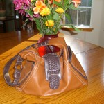 The Purse Dillema!