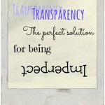Transparency-The Perfect Solution for Being Imperfect