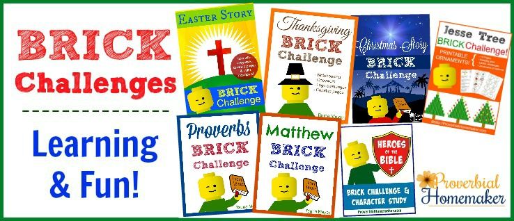 Brick Challenges for kids