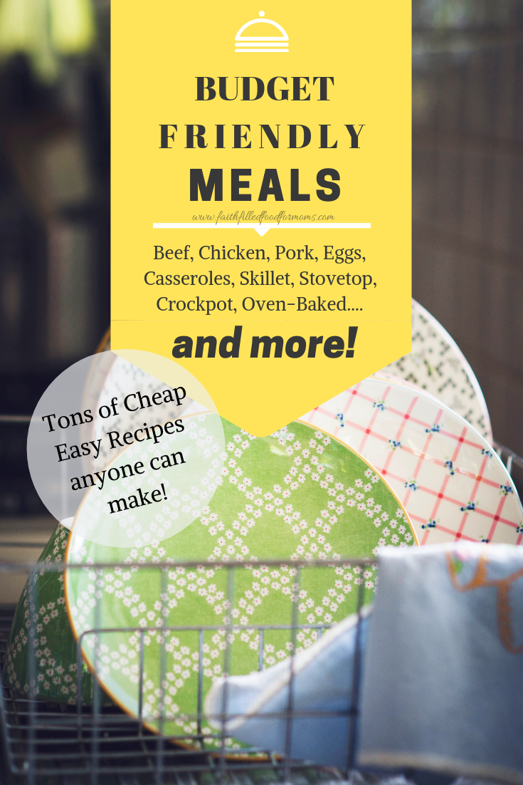 Budget Friendly Meals Anyone Can Make! Lots of Cheap Easy Recipes!