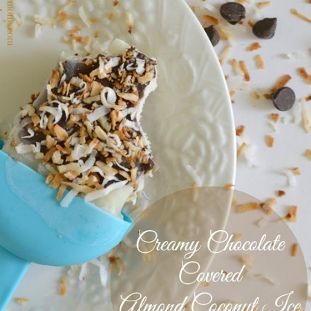 Chocolate Covered Almond Coconut Ice Cream Bars