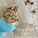 Creamy-Chhocolate-Covered-Almond-Coconut-Ice-Cream-Bars