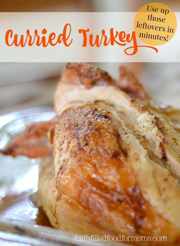 Curried Turkey ~ Leftover recipe