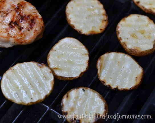 Grilled Potato Fries