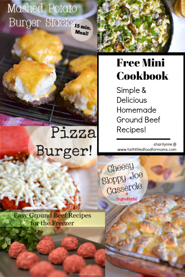 Free Mini Cookbook Easy Delicious Homemade Ground Beef Recipes