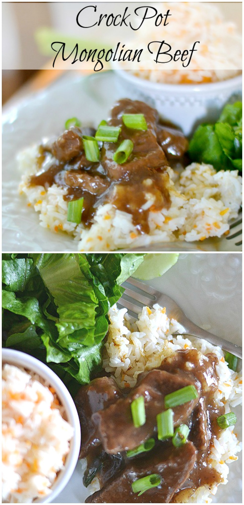 Easy and delicious Crockpot Mongolian Beef. Another one of our favorite family meals. YUM!