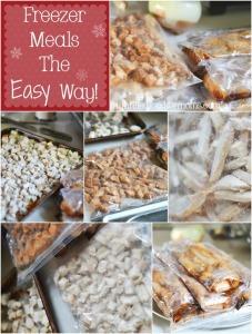 Buying in Bulk – Freezer Meals The Easy Way