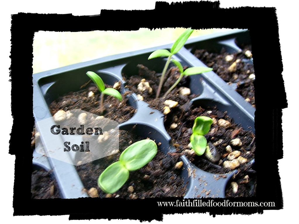 The Success to Growing a Garden is in the Soil