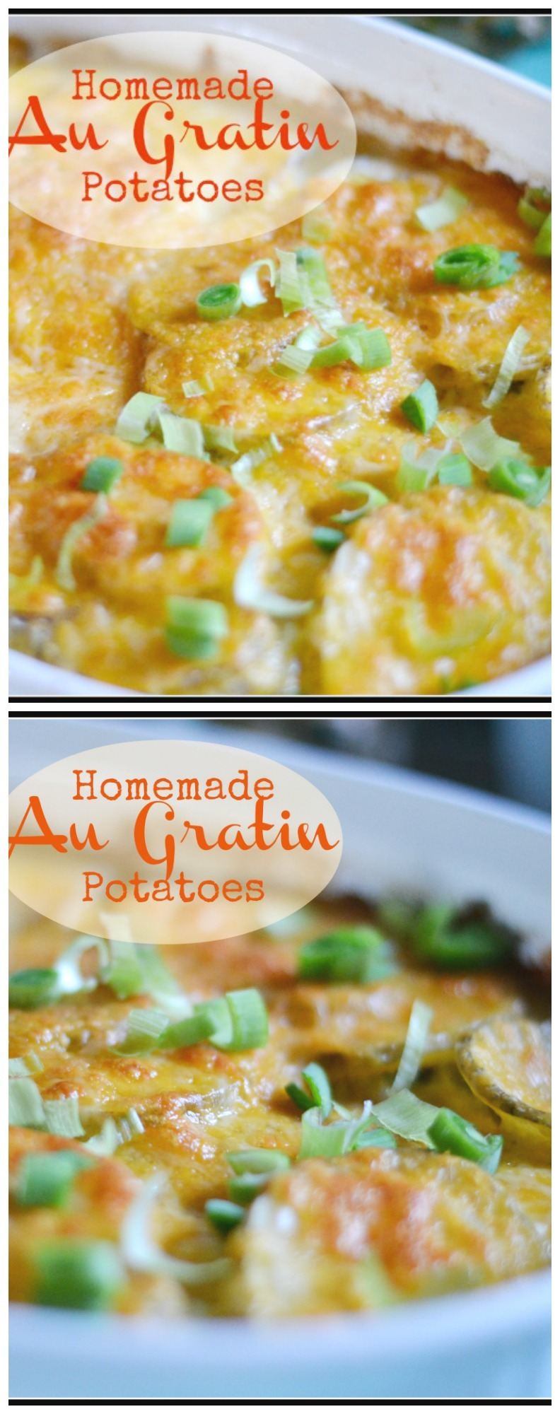 Homemade Au Gratin Potatoes! This side dish is so easy, delicious and cheap to make! Great for any holiday or for company!