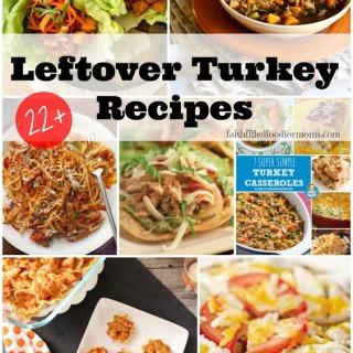 Leftover-Turkey-Recipes.jpg