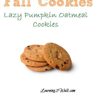 Pumpkin Oatmeal Cookies: Fall Activities for Preschoolers