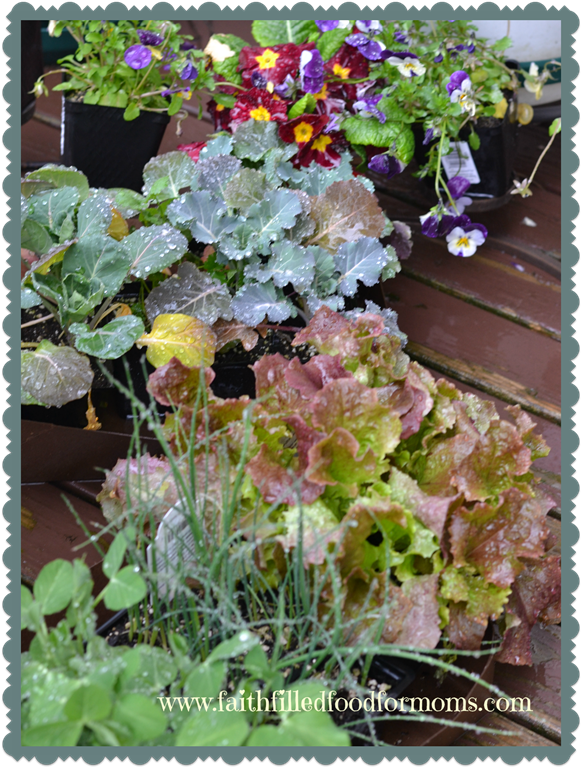 Fun and Useful Gardening Printables and Downloads!  For Free!