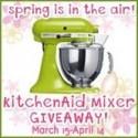 KitchenAid Mixer Giveaway and MORE-WAY MORE!