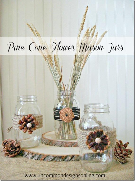 Pinecones and mason jars