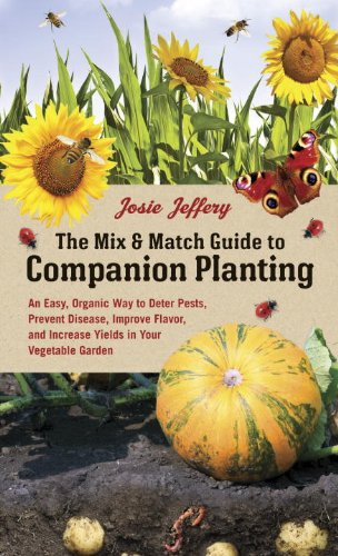 mix and match companion planting
