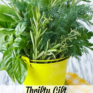 Best DIY Thrift Gifts Ever: Windowsill Garden